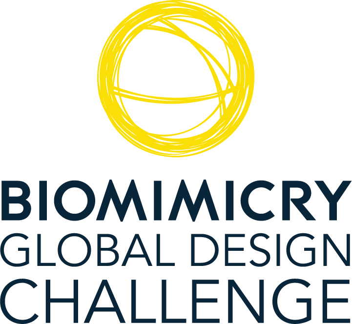 Biomimicry Global Design Challenge | Ray C. Anderson Foundation